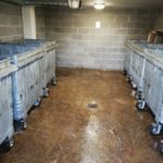 Dritbusters_UK_bin_Cleaning_after_4